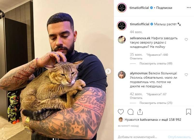 «Какой ужас!» Тимати показал ужасающие фото после игры с котом
