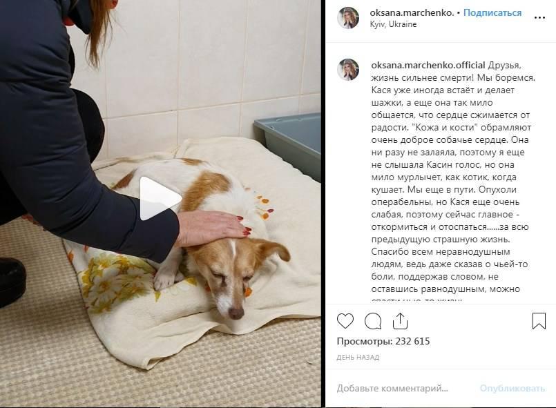 «Сейчас главное - откормиться и отоспаться за всю предыдущую страшную жизнь»: Оксана Марченко довела сеть до слез новым постом в «Инстаграм»