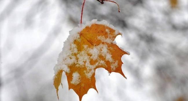 Морозно и много снега: Какой будет погода на следующей неделе