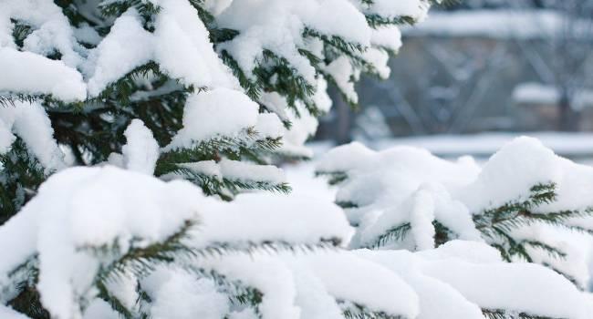 Будет очень много снега: синоптики предупредили о непогоде в некоторых областях