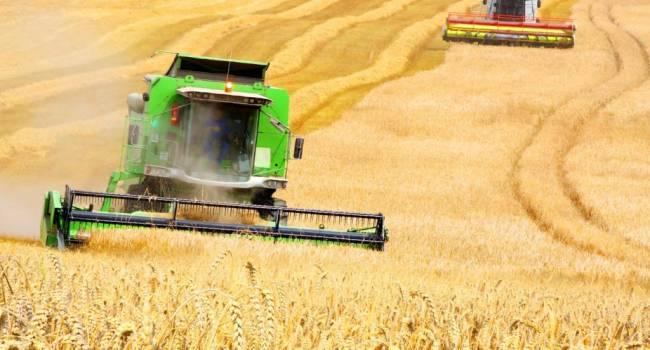 «Все занимаются высокотехнологичным экспортом, а Украина продает улиток, орехи и мед»: Экономист рассказал об аграрной сверхдержаве