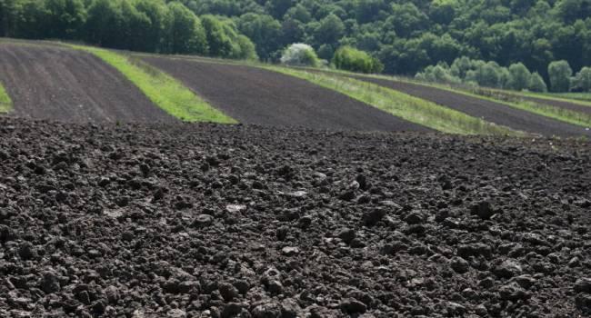 «Не ждите роста цен на чернозём»: Эксперт объяснил, почему украинская земля не может стоить дорого