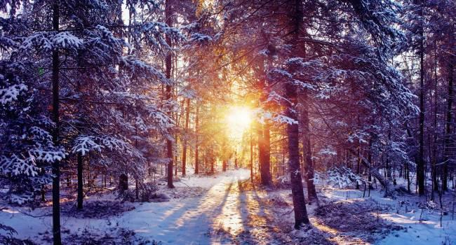 «До +10»: синоптик розповіла, якою буде погода в Україні на вихідних