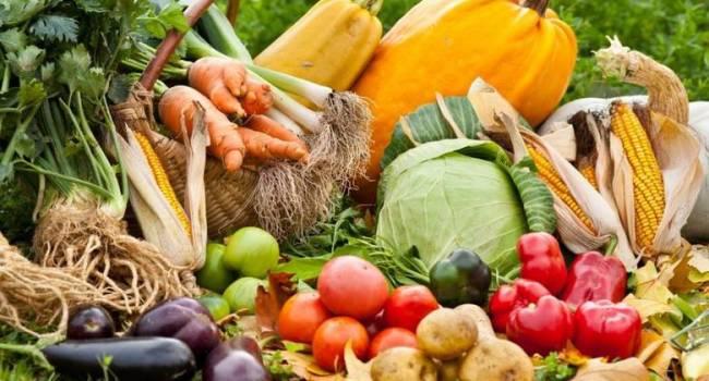 Большой урожай здесь не причем: эксперты рассказали, что будет с ценами в магазинах