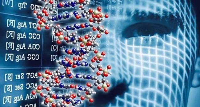 «Генетический паспорт международного образца»: У Пушилина заявили о создании нового вида паспорта