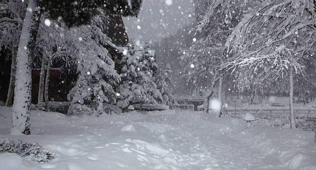 Прогноз погоды на 27 декабря: похолодание и мокрый снег
