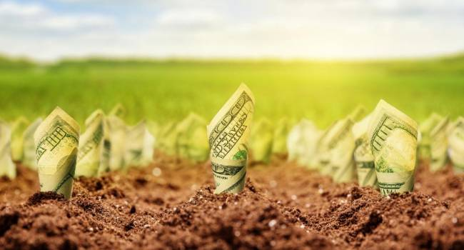 «Нужно как-то расплачиваться с кредиторами»: Головачев утверждает, что рынок земли в Украине откроют уже к середине февраля