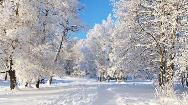 Синоптик рассказал о грядущем стремительном потеплении в январе: названа дата