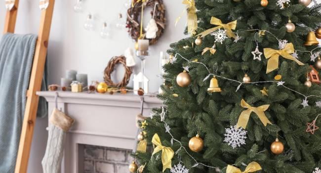 «Она вам радость принесла, а вы ее на свалку...»: Специалисты рекомендуют не выбрасывать новогоднее дерево, а использовать его с пользой для себя