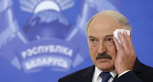 Страна понесет огромные убытки: из-за антироссийской риторики Лукашенко ждут неприятности