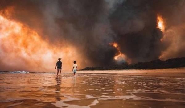 Для восстановления после масштабных пожаров Австралии понадобится 100 лет
