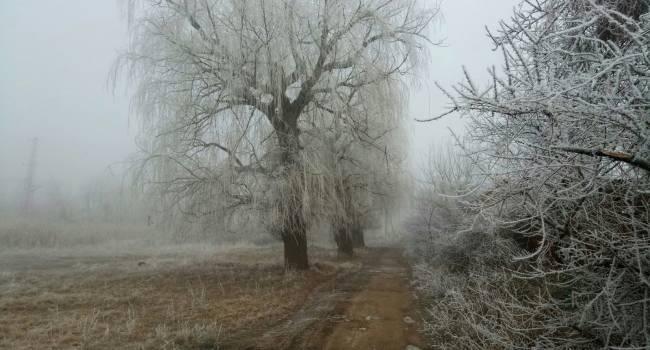 «Тумани й паморозь!» Синоптик розповіла про погоду в Україні на найближчі дні