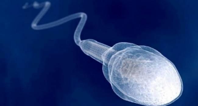 Лечить спину спермой: а почему бы и нет?