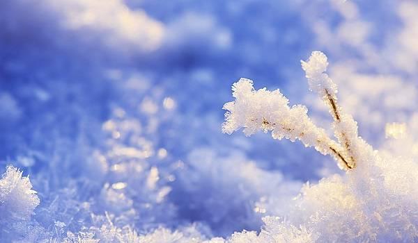 «Охватит все регионы страны»: синоптик рассказал, будет ли в Украине настоящая зима