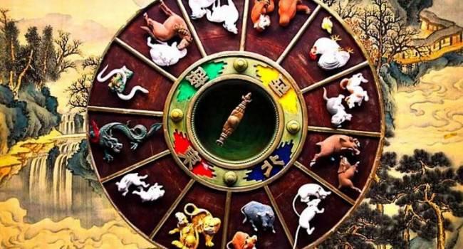 Удачная карьера, любовь и активность: голливудский астролог дал прогноз на год Крысы