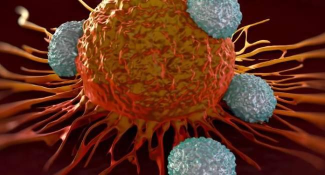 Рак бывает заразным: онколог сделал сенсационное заявление