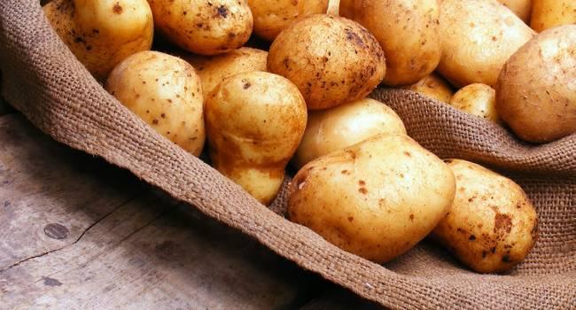 «У нас действительно уникальная ситуация»: эксперт рассказал, почему Украина импортирует картофель при высоких урожаях