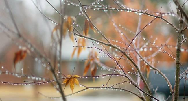 Циклон ослаб, но дожди не прекратятся: синоптики рассказали о погоде до конца недели