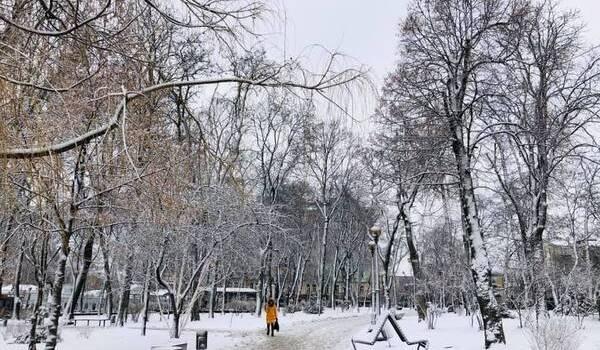 «И не говорите, что вы его не видели»: Киев и область накрыл мощный снегопад