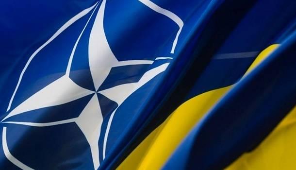 Правительство приняло специальную программу для интеграции в НАТО