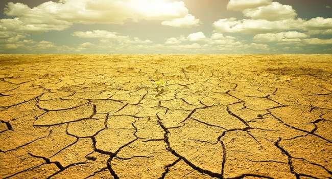 Превратятся в пустыню: метеоролог назвала последствия климатических изменений