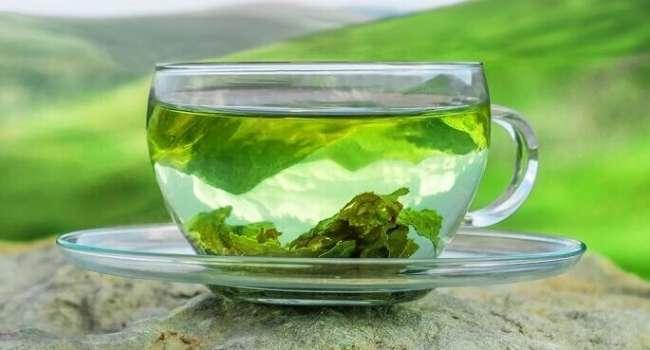 «Чай приносит похудение»: Зеленый чай без добавок рекомендован диетологами