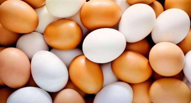 Мнения экспертов: сколько яиц можно употреблять в неделю