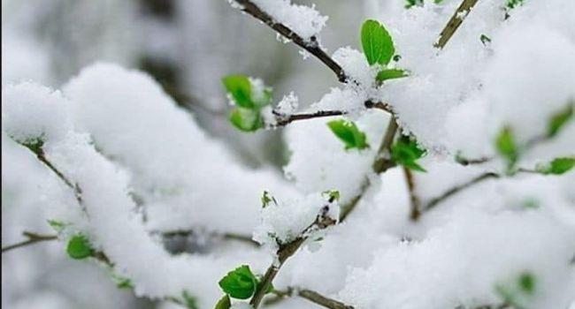 1 апреля погода шутить не будет: синоптик предупредила о холодах и снеге