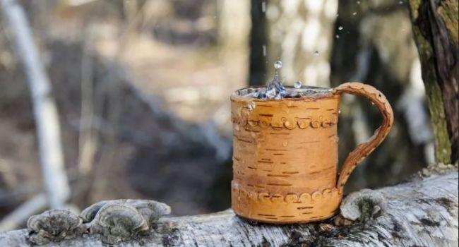 Эксперты назвали уникальные свойства березового сока
