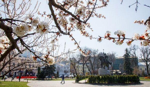 В Киеве начало текущего года стало самым теплым за всю историю наблюдений