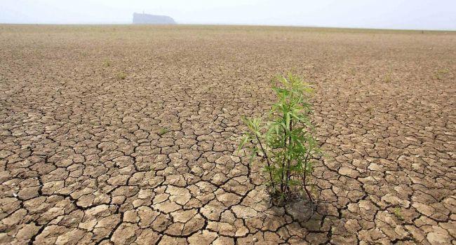 Придется привыкать: синоптик предупредил о неожиданных погодных условиях этим летом