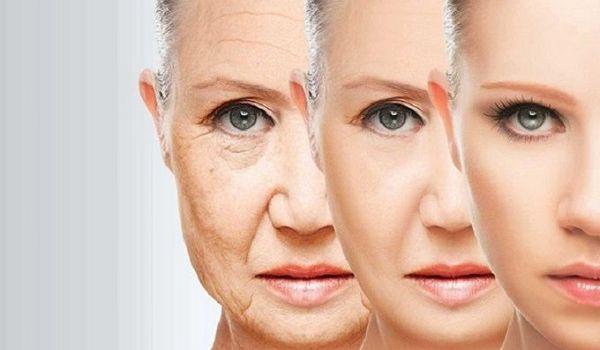 Ученые впервые нашли способ остановить старение клеток человека
