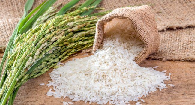 Для диеты точно не подойдет: эксперты назвали вредные свойства риса