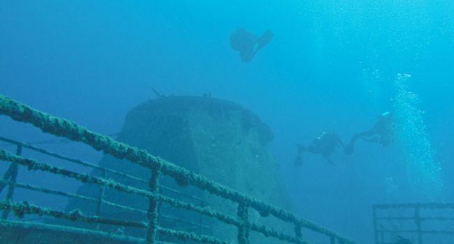 Под дном Тихого океана есть жизнь