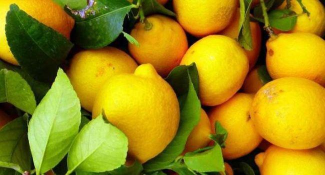 Диетолог развенчала миф о пользе лимонов