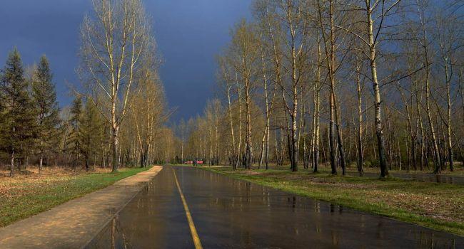 Снова дожди и холод: синоптики рассказали, когда нужно ждать понижения температуры