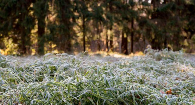 Готовьтесь к сильным заморозкам: синоптики предупредили о непростой погоде в выходные