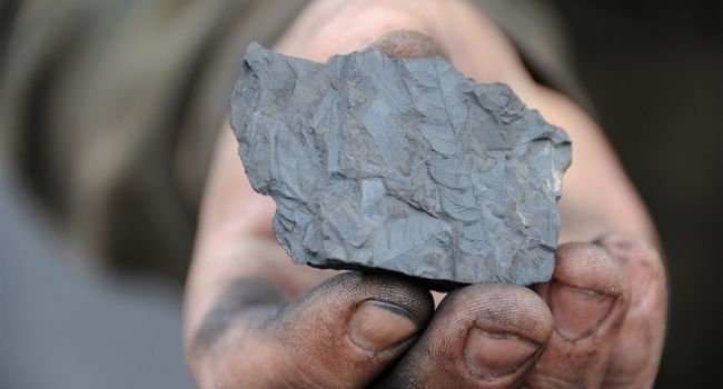 «Угольная отрасль Украины на грани исчезновения»: Профсоюзы обратились к президенту, Кабмину и спикеру парламента