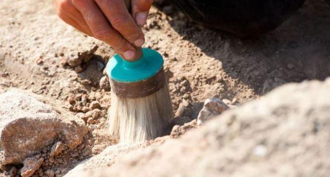 Алкоголь был еще 15 тысяч лет назад: археологи из Израиля обнаружили самое древнее пиво