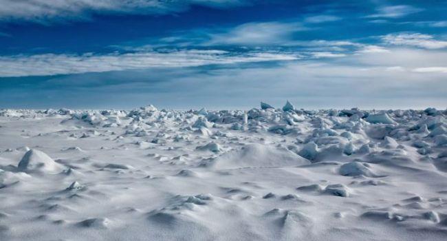 40 тысяч лет: ученые обнаружили древние образцы в Арктике