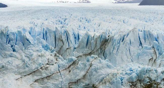 Непоправимый ущерб: ученые предупредили о гибели экосистем через 10 лет