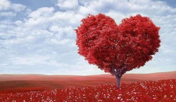 Ученые заявили о пагубном влиянии лжи на работу сердца