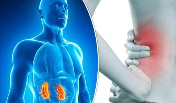 Стало известно о пяти симптомах, свидетельствующих о подорванном здоровье почек