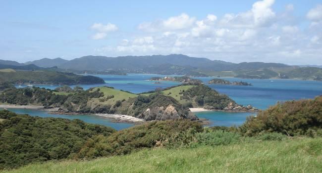 Большой пузырь с лавой: ученые заявили о странной находке в Новой Зеландии