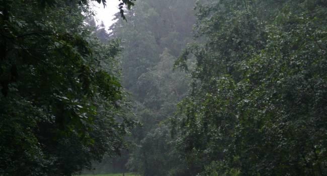 Облака рассеются, резко потеплеет: в Гидрометцентре порадовали прогнозом на эту неделю