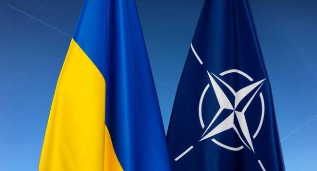 Альянс признал Украину членом Программы расширенных возможностей НАТО