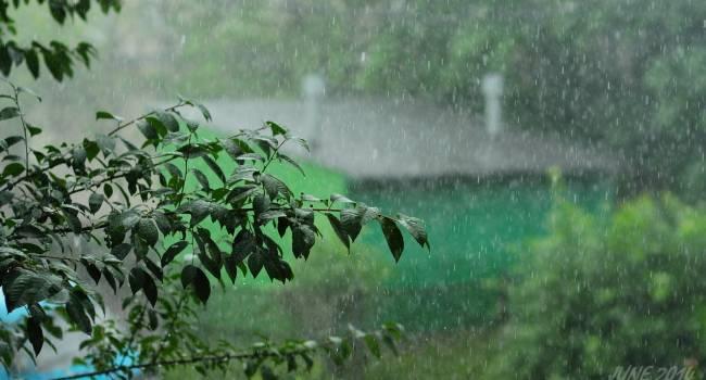 Ближе к концу месяца: синоптики предупредили о дождях и похолодании