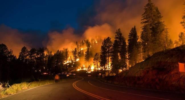 Высокий уровень пожарной опасности: Украина может оказаться в огне