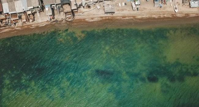 Еще целый месяц: экологи рассказали, как долго будет зеленеть вода на одесских пляжах