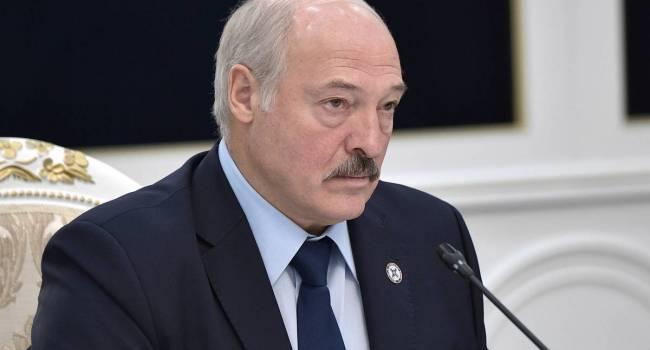 «Это будет самый красивый шаг»: белорусский блогер призывает Лукашенко отказаться от участия в выборах